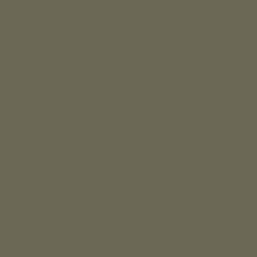 Фон бумажный Falcon Eyes BackDrop 2.72x10 хаки (10)
